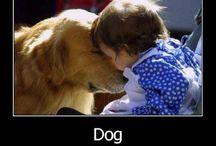animal love! / cute animal stuff.