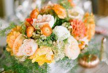 Kwiaty pomarańczowe