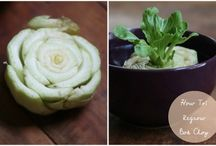 Gardening - Regrowing Food / How to use scraps of food to regrow them.  Really neat for projects with kids.