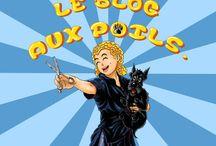 Le Blog aux Poils - le blog de toilettage