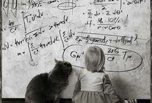 reken - wiskunde humor