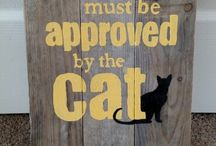 Cat signs / Fun cat signs