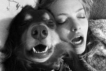 Celebrity Puppy Love / A tribute to celebs and their four-legged friends.