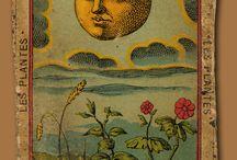 Vintage Occult Illustration