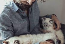 cats & beards