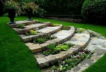 Home bagyard garden