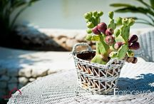 A beach wedding in Siracusa / A beautiful couple chose the beauty of the Mediterranean sea as a backdrop to their wedding
