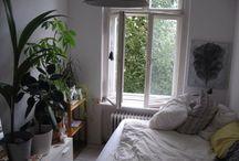 Łóżka kwiaty i okna