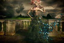 Photography / Art, fashion