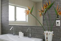 bathroom / by Sarah Hoglund