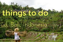 My Indonesian Adventures
