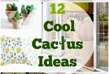 Because Cactus / Cacti McLovin'.. / by Not Just A Mommy