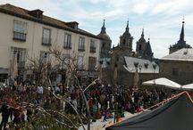 Exhibición en El Escorial 26-3-2016 / #exhibición de #cetreria realizada por Halconeros de Castilla en San Lorenzo del Escorial