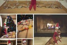 Elf On The Shelf / by Marsha De Ruiter
