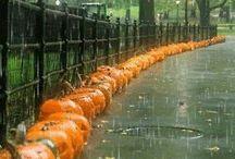 rain !