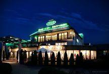 Hotel Witek / Biznesowy 4-gwiazdkowy hotel tuż pod Krakowem. Idealne miejsce na zorganizowanie przyjęcia, spotkania biznesowego czy zatrzymania się w podróży.