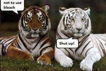 Made me chuckle :)