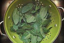 Syltet, saftet, eddik, urter