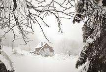 charakteristické znaky zimy