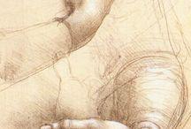 Bosquejo/Sketch; Estudio/Study