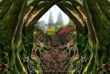 God's Beautiful Creation / unique and wonderous LIFE / by Kristi Godwin