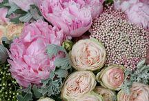 Flowers in details
