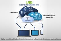 Lead Automation Management Services