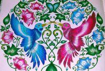 Johanna basford colouring