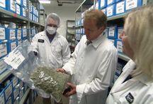 Medical Marijuana News in Canada / Vape Aid is a medical cannabis prescription service and help guide for medical marijuana patients in Canada.