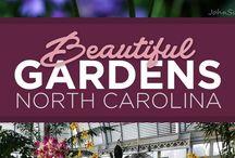 North Carolina - Things to see and do