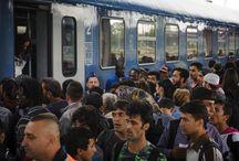 Migrans in Europe