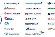 Travel Sky Mile Partners