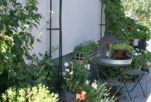 F garden
