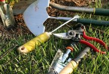 Survival Gardening  / Gardening tips, survival gardening, homestead gardening, organic gardening, gardening how-to.