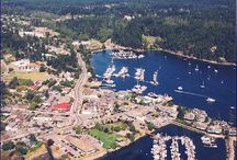 Salt Spring Island from the Air