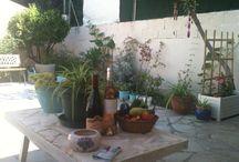 Tout / Provence