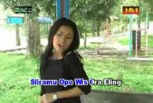 Musik Campur Sari / Nama campursari diambil dari bahasa Jawa yang sebenarnya bersifat umum. Musik campursari di wilayah Jawa bagian tengah hingga timur khususnya terkait dengan modifikasi alat-alat musik gamelan sehingga dapat dikombinasi dengan instrumen musik barat, atau sebaliknya. Dalam kenyataannya, instrumen-instrumen 'asing' ini 'tunduk' pada pakem musik yang disukai masyarakat setempat: langgam Jawa dan gending.