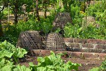 Zeleninová zahrada - Potager