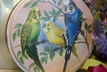Birds and Tins