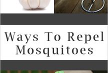 Home Remedies 'Mosquito'
