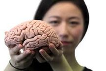 Starting Your Day on the Internet Is Damaging Your Brain
