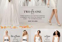 The Wedding Dress - Best Idea