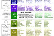 HEALTH / Health tips and info