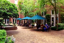 Charleston, South Carolina / This charming southern city is sure to keep you coming back for more! It's beautiful history and architecture will be featured here, along with plenty of suggestions on what you can do.