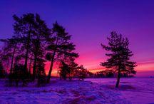 Analiza kolorystyczna: Głęboka Zima (Deep Winter) / http://arsenicmakeup.blogspot.com/search/label/analiza%20kolorystyczna