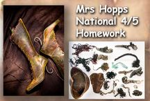 Mrs Hopps National 4-5 Class