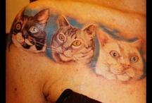 I miei gatti