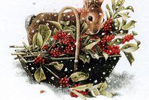 Winter dieren