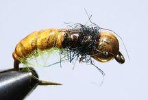 Yellowfish flies