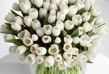 Rundebord blomster
